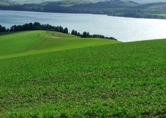 lago-san-giuliano-e-cripta-del-peccato-originale-in-mtb-6
