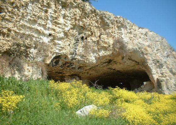 murgia-timone-grotte-e-gravine-matera-11