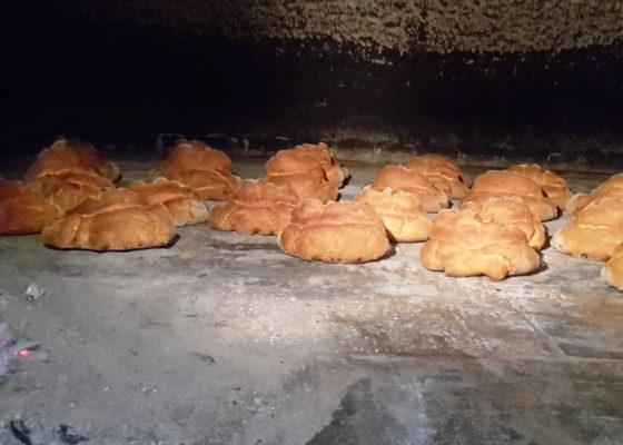 matera-bread-and-mozzarella-cheese-5